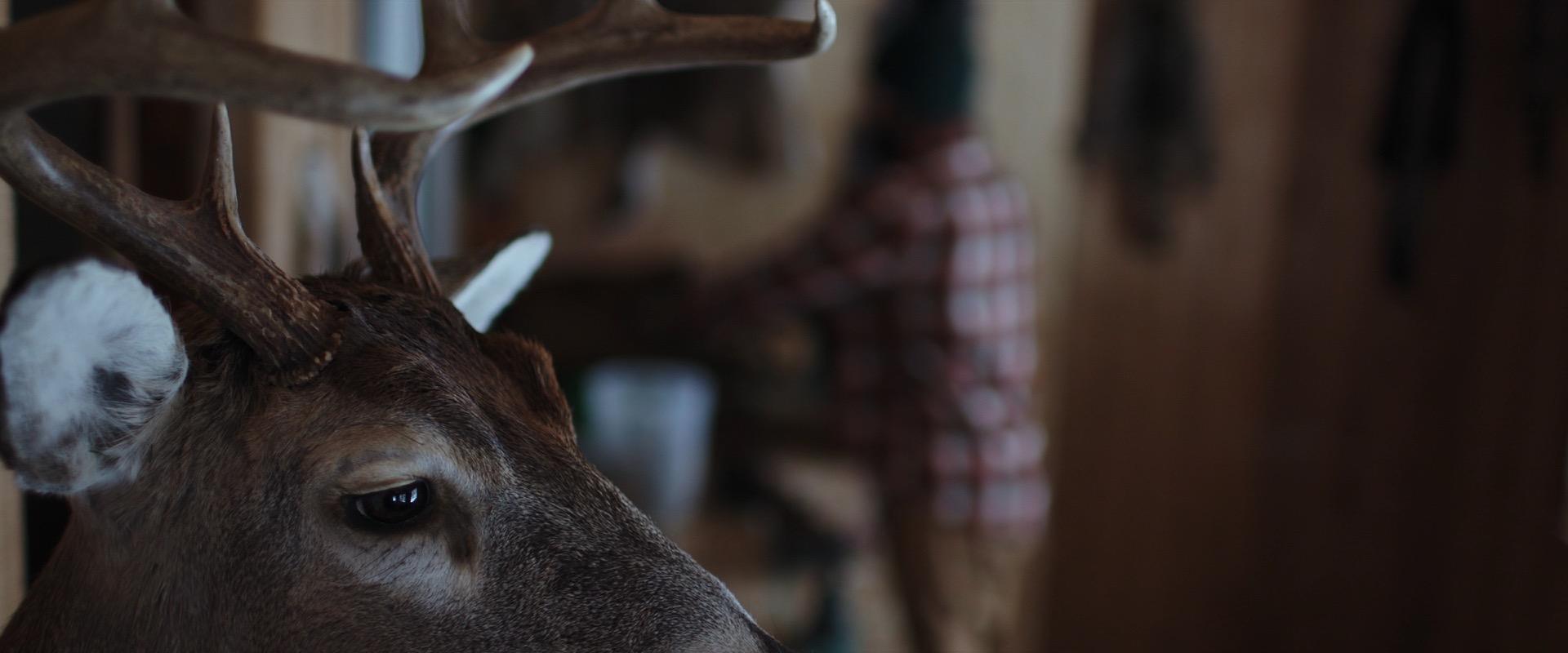 Hunting-Lands-Deer-Head1