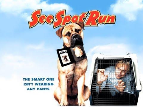 nuestro top 12 de las mejores películas de perros