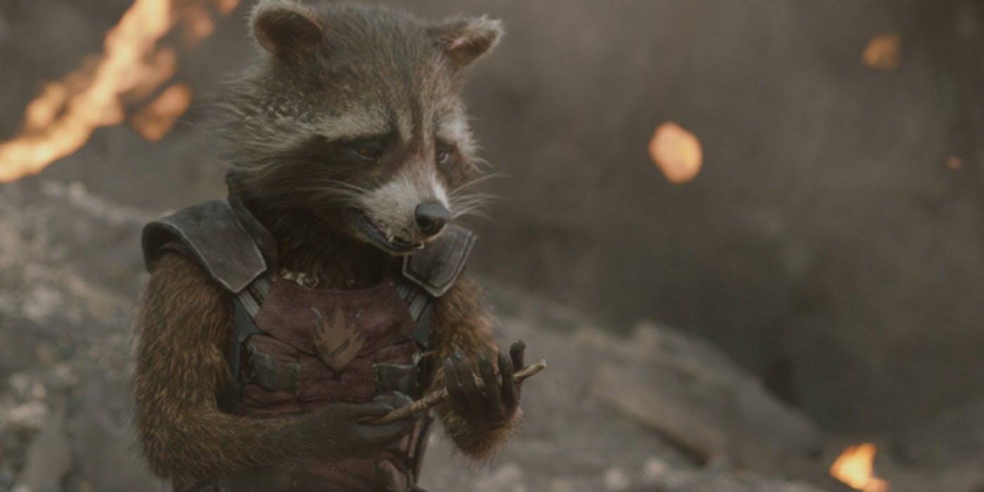sad-rocket-raccoon
